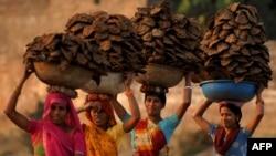 Индийские женщины несут на голове высушенный коровий навоз. Иллюстративное фото.