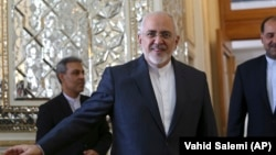 Iranian Foreign Minister Mohammad Javad Zarif (file photo)