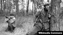Беларускія патрызаны, 1943