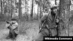 Беларускія партызаны, 1943