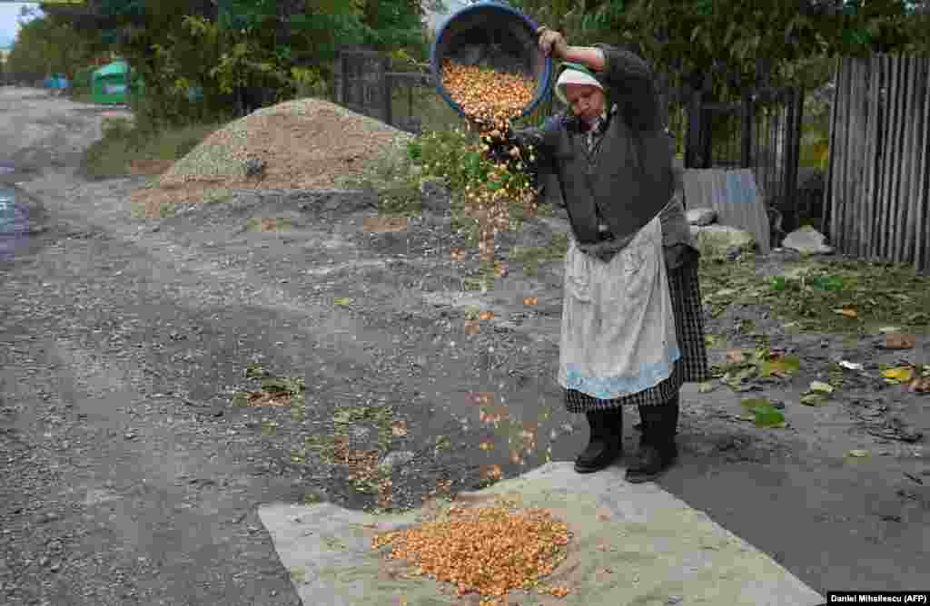 An ethnic Russian woman dries onions in the village of Dobrogea.