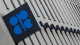 یکی از مهمترین نشانههای این زوال آن است که این سازمان، برای تأثیرگذاری بر بازار جهانی نفت، مجبور شده است با ۱۰ کشور غیر عضو که زیر پرچم روسیه گرد آمدهاند، ائتلاف کند.