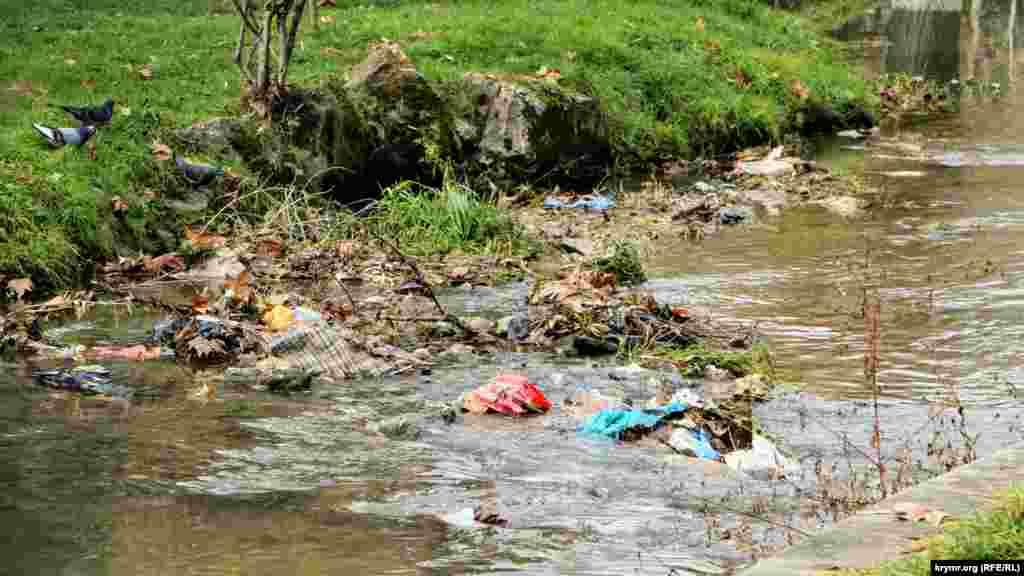В реке валяются пакеты и прочий мусор