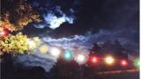 Detaliu d epe coperta albumului In Wonderland, Hooverphonic, 2016.