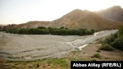 Ադրբեջան-Փայիզ անտառը Նախիջևանում, արխիվ
