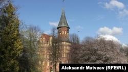 Кафедральный собор. Калининград