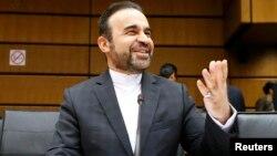 رضا نجفی، نماینده ایران در آژانس انرژی اتمی