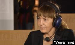 Monica Macovei, europarlamentară, la Strasbourg (2013)