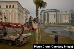 Скопье, Македония – Рабочие кутают китайскую пальму, приобретенную за € 500, пытаясь спасти дерево от зимнего мороза. 90 % из посаженных 130 пальмовых деревьев погибнет в первую же зиму