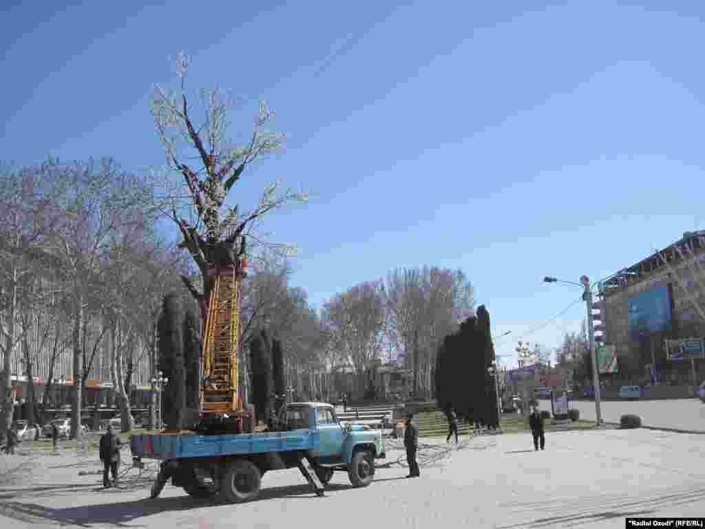 Нахустин паёми Наврӯзӣ - Зардолуи 10 метра дар Хуҷанд