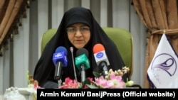 """Minou Aslani, leader of the women's branch of the Basij domestic security force, blamed the rumor on foreign """"enemies"""" of Iran."""