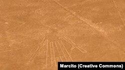 Один из рисунков в пустыне Наска (фламинго)