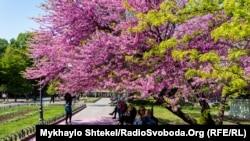 Міський сад у центрі Одеси