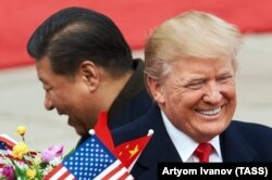 Си Цзиньпин и Дональд Трамп в Пекине. 9 ноября 2017 года