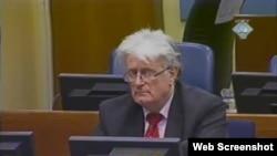 Radovan Karadžić na suđenju u Hagu, 14. veljače 2012.