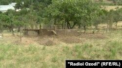 Макони дафни хешовандони Ҳалимов