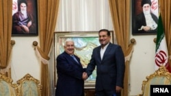 The secretary of Iran's National Security Council, Ali Shamkhani (right) shakes hands with Syrian Foreign Minister, Walid al-Muallem during his visit from Tehran. February 05, 2019.