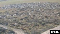 Земля після незаконного видобутку бурштину, Рівне, 2009 рік