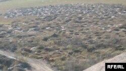 Пошкоджені незаконним видобутком бурштину території Рівненщини, 2009 рік