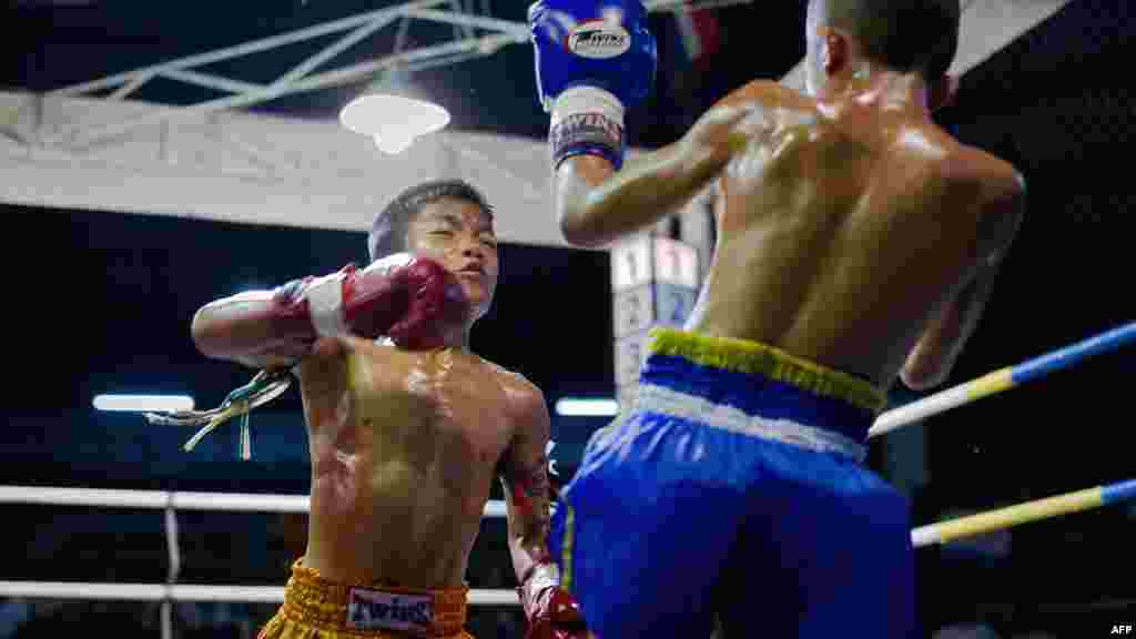 Muay Thai boxers fight in the ring