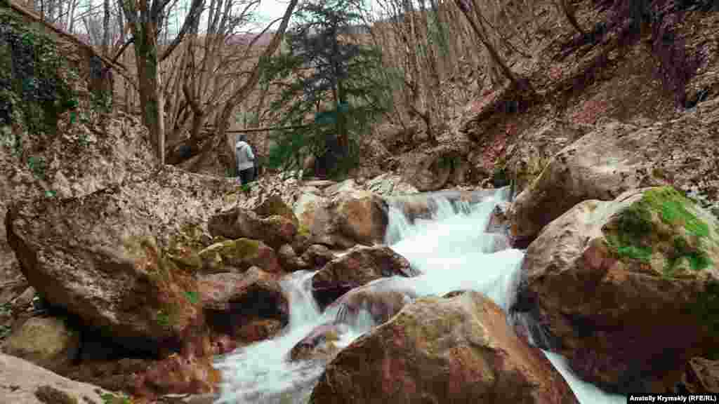 Головна річка каньйону – Коккозка. Температура води в самій річці та її притоках ніколи не перевищує +11 ºС