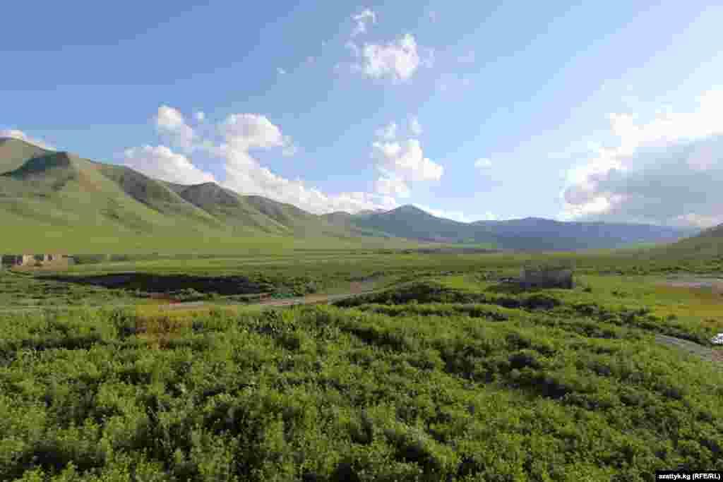 Холодные ручейки, спрятанные в зеленой траве, бегут вдоль тропинок, вытоптанных редкими пастухами и лошадьми