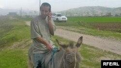 Мужчина верхом на осле говорит по телефону. Узбекистан. Иллюстративное фото.