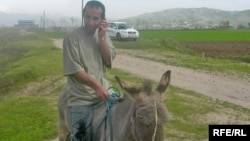 Uzbekistan - A man Riding Donkey Talks to the Mobile Phone