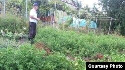 По словам фермера, если серьезно заниматься хозяйством, то и результат будет