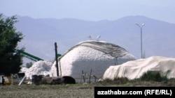 Пункт приема хлопка, Туркменистан