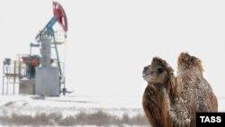 Солтүстік Бозащы кен орны. Маңғыстау. (Көрнекі сурет)