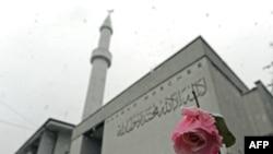 Цветущая роза у одной из цюрихских мечетей