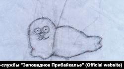 Рисунок нерпы на льду Байкала