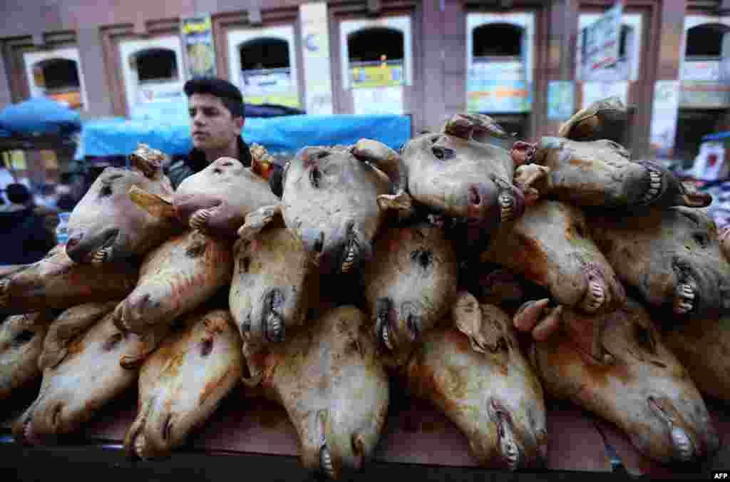 An Iraqi Kurdish street vendor sells cooked goat heads in a market in Irbil, the capital of Iraq's Kurdistan region. (AFP/Safin Hamed)