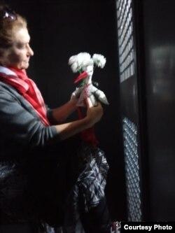 Алена Гнаўк
