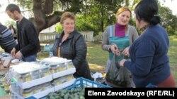 Мраморные клопы, невероятно расплодившиеся в Абхазии, пожрали все, что было в их силах на огородах и плантациях
