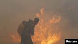 A firefighter attempts to extinguish a conflagration just over a 100 km south of Moscow during last year's forest fires that are believed to have contributed to tens of thousands of deaths last year.