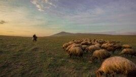 Çobanın həyatı, Səyahət davam edir… Lahıc, Azərbaycan.