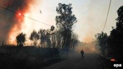 Лесные пожары в Португалии
