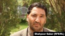 محمد سردار بهادری، عضو شورای ولایتی هرات
