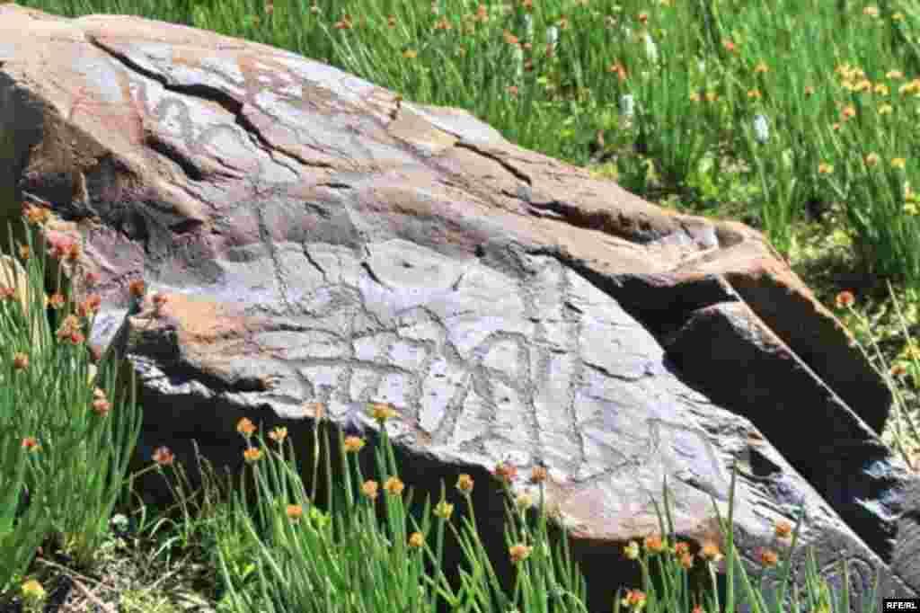 Саймалуу-Таш или расшитые камни Тянь-Шаня #10