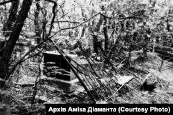 Зруйноване й занедбане єврейське кладовище біля Бабиного Яру. Серпень 1961 року, архів Аміка Діаманта.