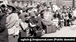 Депортация судетских немцев в 1945 году после освобождения Судетов от немецкой оккупации