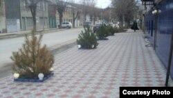 Югоосетинские граждане ждут от правительства создания более или менее приличного государственного сервиса, внимания и благожелательности