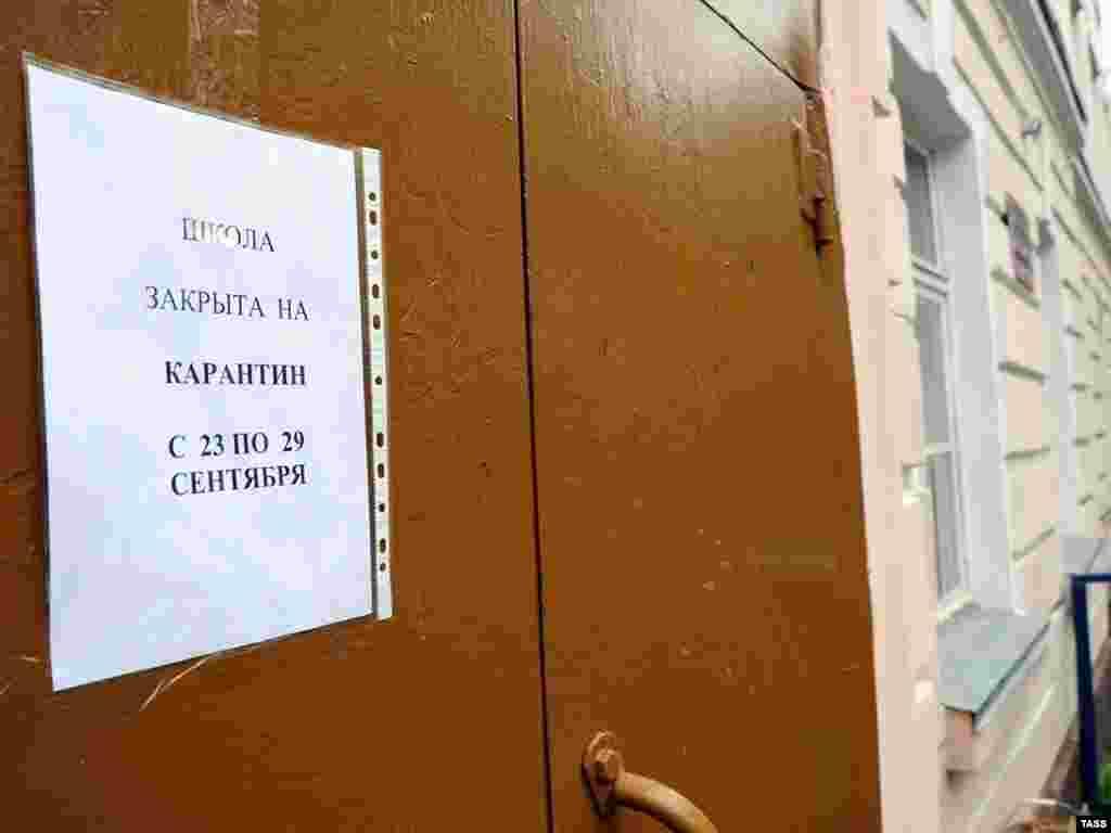 В Мурманской области 20 человек заразились гриппом H1N1