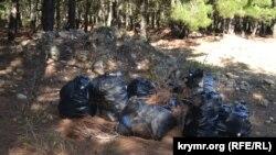 Мешки с мусором, собранным в лесу у Монастырского шоссе активистами движения «За чистый Севастополь»