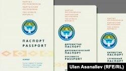 Дизайн новых паспортов, обсуждаемых пользователями соцсетей.