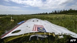 A piece of the wreckage from MH17 where it fell in a field near the village of Grabove in the Donetsk region