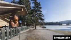 Cтатуя медведя, Словения