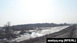 Күнтай тоғайы. Оңтүстік Қазақстан облысы Арыс ауданы Байырқұм ауылы, 19 ақпан 2014 жыл.
